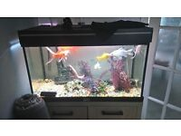 QUICK SALE fish tank cupboard for sale