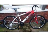 Nevis Terrain Mountain Bike (Brand new)