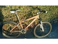 Kona shred mountain bike