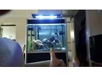 Fluval profile fish tank 275 lt