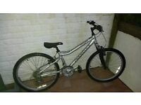 "Ridgeback M24 bike silver 20"""