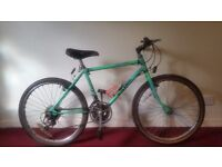 Boy's Raleigh Lizard Mountain Bike