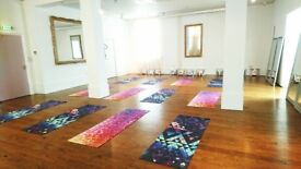 Yoga/Pilates/Dance Studio or Concept Space