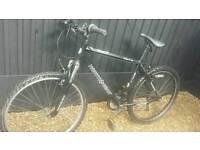 Man's rxt mountain bike