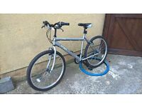 Ladies bike. like new