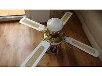 Extra Large Ceiling Fan With Light