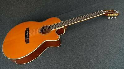 IBANEZ AEG10NII-TNG Acoustic-Electric CLASSIC CUTAWAY NYLON Strings FISHMAN PU.
