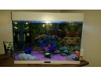 Fish tank £50
