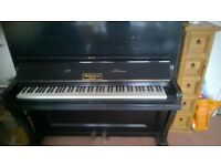 Piano, Baderbein Stand Up