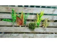 6 x Aquarium Plants, bright