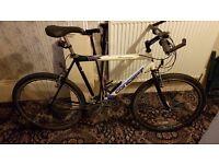 Bike for sale. Concept Saratoga 24-speed Mountain bike