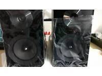 Samsung Micro Hifi Speakers