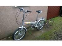 Folding lightweight bike
