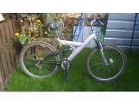 Venture Trespass bike