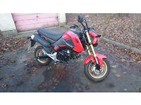 2015 Honda MSX 125cc / Honda Grom / 125c bike