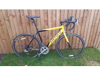 Carrera TDF Road Bike (Large frame 58cm)