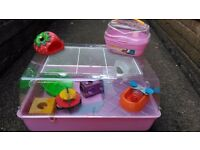 Dwarf Hamster Cage + Everything Needed (Pink or Blue)