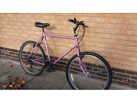 Giant Hybrid bike good condition (city centre)