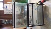 3 aquariums with stand two 30 gal one 20gal long