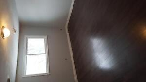 Renovated 3 or 4 bedroom townhouse London Ontario image 4