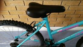 Mountain bike ladies. Model Terrain MTB1025 colour turquoise. Brand new