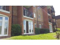 Brand new 1 bed flat to rent in High Wycombe