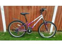 Mountain Bike in Brand New Condition