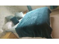 Double bed throw and 3 cushions.