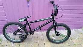 phase ruption BMX