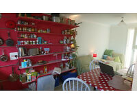 2 double rooms in friendly houseshare 2 mins from the beach and 20 mins into centre