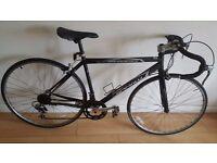 Ammaco Road Racing bike. 21 Speed. 700C wheels (Suit: 16 yrs to Adult).