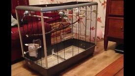 Large cage with 2 budgie
