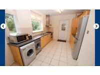 3 bed semi to rent from end of Jan. £595 pcm plus £595 bond