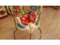 Fisher Price Rainforest Jumperoo Bouncer - SOLD