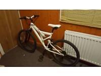 Bunnyfox bike