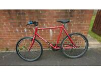 Raleigh Cyclone Red Bikd