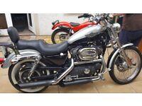 Harley Davidson 1200 xlc