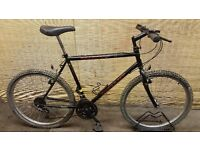 Mens bike FALCON DEFIANT Frame 21,5''