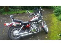 250cc Yamaha Virago lookalike motorcycle 2007 Great Condition, genuine reason for sale BARGAIN!