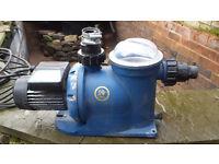 Argonaut AG Series pond pump