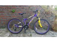 "Carrera Luna Junior Mountain Bike 24"""