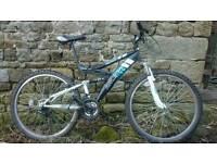 Raleigh full suspension bike