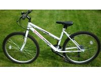 British Eagle Riviera Bike For Sale