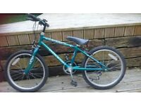 childs bike 16 inch wheels
