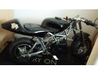 black racing mini motor motorbike 49cc number 54 Rev and fly