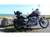 Harley Davidson XLH 883 C Sportster stage 1 tuned