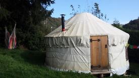Yurt for rent in Harbertonford