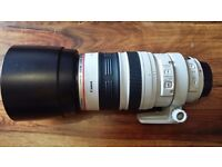 Canon EF 100-400mm F/4.5-5.6 L IS USM Lens Mint Condition