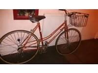 LADIES BIKE + Basket carrier ° Vintage Classic Town bike