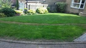 re-green your brown/ scorched lawn inside a few days 28 UNOPENED (25kg bags of ammonia sulphate!)